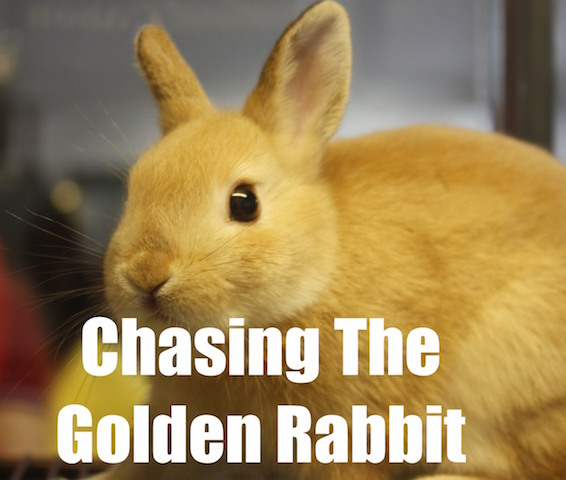 chasing the golden rabbit a parable helping youth workers make life long followers of jesus. Black Bedroom Furniture Sets. Home Design Ideas