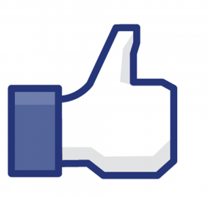 4XfqCmrSXWvJhhk9vZxc_facebook-like-icon